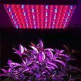 MVPower 225 LEDs Pflanzenleuchte Pflanzenlampe, 240V, 900lm,15W, Blau Rot Licht für Zimmerpflanzen, Obst Gemüse Greenhouse Glashaus Gewächshaus