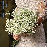 Kunstblumen Gypsophila- Künstliche Blumen Gipskraut (8er-Pack)- Schleierkraut mit unechten grünen Blättern - Kunstblumen für Zuhause, Büro, Schlafzimmer und Wohnzimmer- perfekt für Blumengestecke
