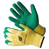 3x Garden Eden Gartenhandschuhe EN 388 | Pflanz- und Bodenhandschuhe für Arbeiten im Garten | Ideal auch als Rosenhandschuhe oder Beethandschuhe | Handschuhe zum Graben | Größe: 7 (S)