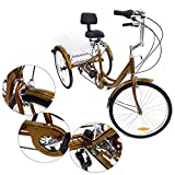 Z&Y Dreirad für Erwachsene 6Speed 24' 3 Rad Senioren Shopping Fahrrad mit Korb Rot