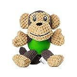 Raffaelo Hundespielzeug Hund Plüschspielzeug   Interaktives Spielzeug für Hunde   Quietschspielzeug für Hunde   Kauspielzeug für Welpen, Kleine und Mittelgroße Hunde