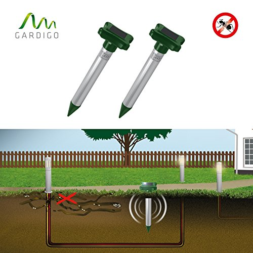 Gardigo Solar Ameisenabwehr 2er Set, Ameisenvertreiber für Rasen Blumentöpfe Sandkästen, Ameisenfrei, hilft bei Ameisen im Garten | Deutscher Hersteller