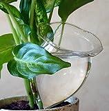 4 Durstkugeln Bewässerungskugeln Durstkugel Pflanzensitter GFGR