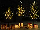 CCLIFE LED Kiefern Baum innen Außen Weihnachten Christbaum Lichterbaum warmweiss Kaltweiß Weihnachtsbeleuchtung, Farbe:Warmweiß, Größe:150cm mit 120LEDs