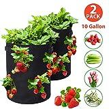 Tvird Erdbeere Pflanzsack, Pflanzen Tasche Grow Tasche Pflanzbeutel mit Griffe 8 seitliche Wachstumstaschen, dauerhaft AtmungsaktivBeutel Pflanzsack für Erdbeeren,2 Pack 10 Gallon