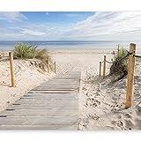 murando - Fototapete Strand und Meer 200x140 cm - Vlies Tapete - Moderne Wanddeko - Design Tapete - Wandtapete - Wand Dekoration - Landschaft Natur c-B-0005-a-b
