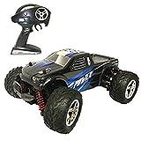 HomeXin RC Cars Rock Offroad Racing Fahrzeug Crawler Truck 2,4 Ghz 4WD High Speed 1:20 Radio Fernbedienung Buggy Elektro Fast Race Hobby- Blau