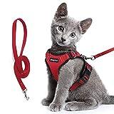 Eagloo Katzengeschirr Set mit Leine, Katzenleine mit Geschirr für Katzen Kitten Katzengarnitur Kleine Katze Cat Harness Soft Ausbruchsicher Kaninchengarnitur Verstellbar Katzenweste Rot XS