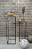 Livitat Beistelltisch 2er Set Satztisch Pflanztisch Pflanzsäule Säulentisch Metall LV5018