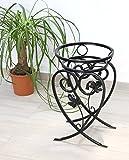 DanDiBo Blumenständer Metall Schwarz 49 cm Blumenhocker KW420 Pflanzensäule Pflanzenständer Blumensäule Klein