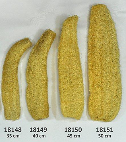 Luffagurke bis 50 cm Luffaschwamm Luffa Naturschwamm Badeschwamm Massageschwamm (18149 - Natur belassen 40 cm)
