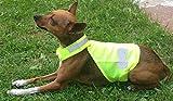 TTGH Warnweste Hund Hundewarnweste Reflektorweste mit Klettverschluß Hundeweste GR.M
