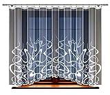 HAFT Gardine; Store; Vorhang transparent, elegant weiß, Kräuselband (160 x 400 cm)