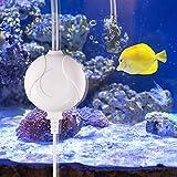 Karidge Aquarium Luftpumpe, Mini Leise Luftpumpe Für Aquarium Luftpumpe Aquarium Oxygen Luftpumpe Für Aquarium mit Air Stone und Silikonschlauch weiß