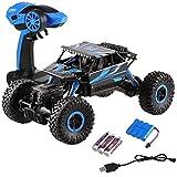 Profun Ferngesteuertes Auto 4WD Rock Crawler RC Car Geländewagen Auto 1:18 Fernbedienung Monster Truck /Off Road Fahrzeug (Blau)