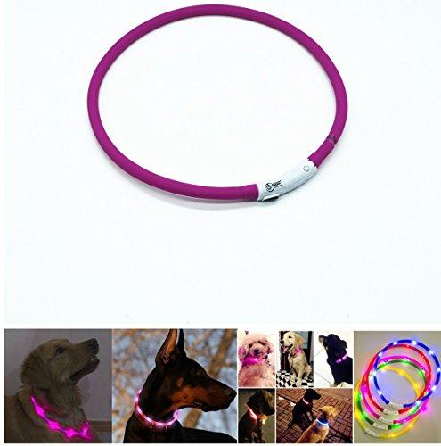 Case Wonder - LED Leuchthalsband Hunde Halsband - USB Wiederaufladbar - Längenverstellbarer Haustier Sicherheit Kragen / Blinkende Kragen Deluxe für Hunde und Katzen - Improved Hund Sichtbarkeit & Sicherheit - 3 Lights Mode & 8 Farben (Lila)