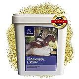 EMMA  Mineralfutter komplex für Pferde I Zusatzfutter B-Vitamine & A,E,C,D, Biotin, Zink, Selen, Bierhefe I Hufwachstum & glänzendes Fell I Senior 5 Kg