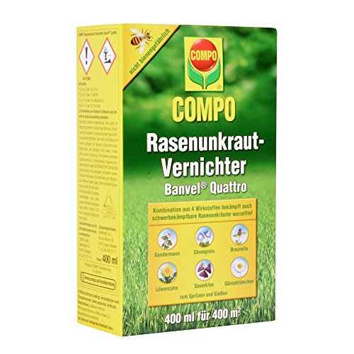 COMPO Rasenunkraut-Vernichter Banvel Quattro (Nachfolger Banvel M), Bekämpfung von schwerbekämpfbaren Unkräutern im Rasen, Konzentrat, 400 ml (400 m²)