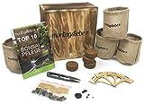 Montagsliebe Bonsai Starter Kit Premium Geschenk Anzucht-Set 4 Sorten Holzbox GRATIS Anleitung & Schere