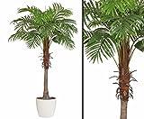 kunstpflanzen-discount.com Künstliche Palme Areca mit 170cm im Keramiktopf - Kunstpalme Dekopalme Palme für Deko