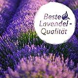 LAVODIA 12x Lavendelsäckchen Lavendelblüten (Bio Lavendel getrocknet), Mottenschutz für Kleiderschrank oder Lavendelduft zum Entspannen, 12x10g Säckchen