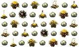 40 Stück Restposten Sonderangebot grüner Tee Teeblumen / Teerosen / Teeblüten / blooming tea / Erblühtee / Aufblühtee aus hochwertigem Grüntee mit natürlichen eingearbeiteten Blüten by Feelino