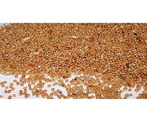 Wellensittichfutter mit Jod und Honig 10 kg Anhaltiner Premiumfutter
