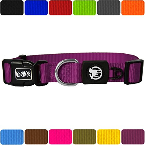 DDOXX Hundehalsband Nylon | für große & Kleine Hunde | Katzenhalsband | Halsband | Halsbänder | Hundehalsbänder | Hund Katze Katzen Welpe Welpen | klein breit Leuchtend bunt | Lila, XS