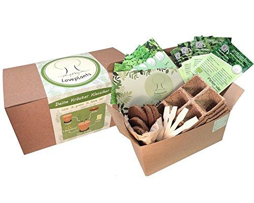 Kräuter Anzuchtset, 4 Sorten Bio Kräuter Saatgut – Kräuter Pflanzset mit Bio Samen, Geschenk Set zu jedem Anlass- perfektes Gechenk Set, verpackt als Geschenk Box, ideales Ostergeschenk