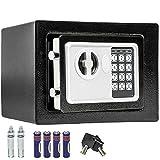 TecTake Wandtresor Numerische Digital Elektronische Sicher 17x 23x 17cm + 4x AA Batterien