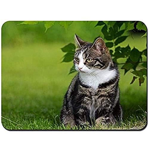 Mouse Pad Katzengras Zu Fuß Sitzen Gestreifte Mauspad Mousepad Mauspads Mauspad Gaming Mat 25X30Cm