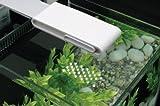 Fluval SPEC 3 Nanoaquarium mit 10l Fassungsvermögen, weiß
