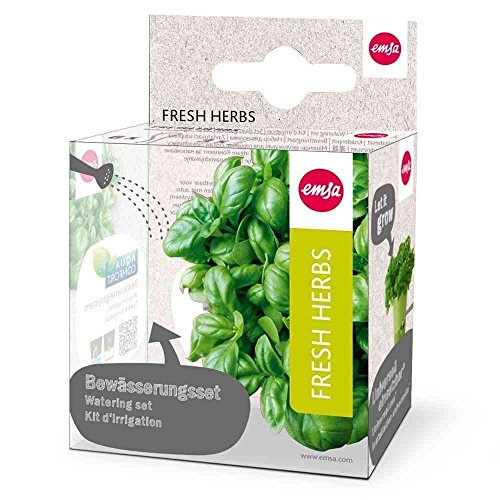 Emsa 515351 9-teiliges Bewässerungsset für Kräutertopf Fresh Herbs, 6 Dochte, 3 Dochthalter, Fresh Herbs
