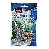 Trixie Katzengras Nachfüllbeutel für # 4232, ca. 100 g/Beutel