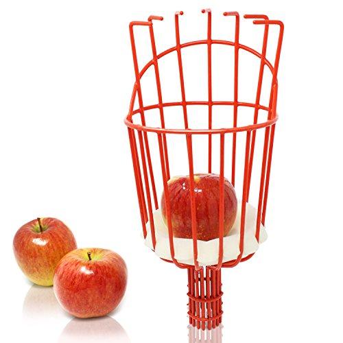 Amazy Iceberk Obstpflücker – Praktischer Pflückkorb zur Ernte von Obst, Kompatibel mit der Iceberk Schneidgiraffe (Nur Gerätekopf)