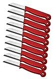 10 er Messer Set Solingen Gemüsemesser Küchenmesser Schälmesser aus Bandstahl - Germany rostfrei 16 cm Gesamtlänge - 6 cm Klinge (Rot)