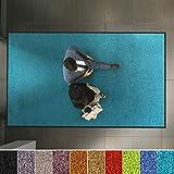 Hochwertige Fußmatte   Öko-Tex Standard 100   bewährte Eingangsmatte in Gewerbe & Haushalt   Schmutzfangmatte mit Top-Reinigungswirkung   Sauberlaufmatte waschbar & rutschfest (120x180 cm, Türkis)