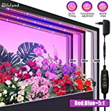 Elfeland LED Pflanzenlampe Pflanzenlicht Pflanzenleuchte mit Timer 10 Heillgkeitsstufen 3Pcs Strip Wachsen licht Wachstumslampe IP65 Pflanzenlichter für Zimmerpflanzen Gartenarbeit Gewächshaus