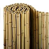 casa pura Bambus Sichtschutz | Bambusmatte in Premiumqualität, massive Bambusrohre | naturbelassen | drei Größen (100x250cm, HxB)