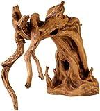 Hobby 41470 Scaper Root 1, 29 x 14 x 23 cm