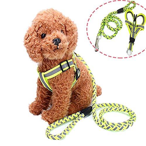 Reflektierende No-Pull & No-Choke-Hundegeschirr mit passender Leine für kleine, mittlere und große Größe Hunde-Heavy Duty für Training & Nacht Walking - Einstellbare und Leichtbau für Ihr Haustier