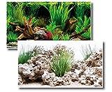 Fotorückwand Wonder beidseitig Bedruckt 150x60cm 2in1 Rückwandposter Rückwand Folie Aquarien Poster Foto Folien