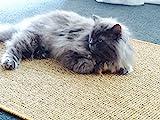 Premium Kratzmatte - Grau, 40x60cm  100% robuster Sisal  Rutschhemmend  Antistatisch   Katzen-Teppich, Katzen-Matte zum Wetzen der Krallen   Kratzteppich, Katzenkratzmatte geeignet für Fußbodenheizung   Sisalmatte, Sisalteppich für Wand & Boden