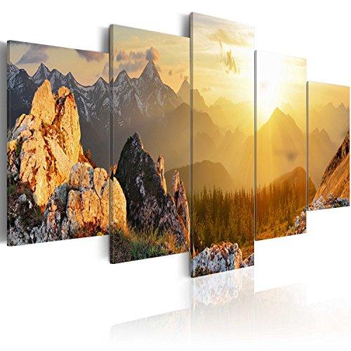 murando - Bilder 200x100 cm - Leinwandbilder - Fertig Aufgespannt - Vlies Leinwand - 5 Teilig - Wandbilder XXL - Kunstdrucke - Wandbild - Gebirge Berge c-B-0056-b-m