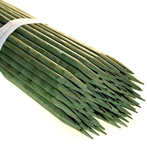 G.G. 100 x Bambus Pflanzstäbe 60 cm Pflanzenstäbe Bambussplitt Splittstäbe Anzucht Rankhilfe …