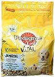 Pedigree Junior Medium Hundefutter Huhn und Reis, 3 er Pack (3 x 3 kg)