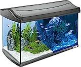 Tetra AquaArt Discovery Line LED Aquarium-Komplett-Set  60 Liter anthrazit (inklusive LED-Beleuchtung, Tag- und Nachtlichtschaltung, EasyCrystal Innenfilter und Aquarienheizer, ideal für Zierfische)