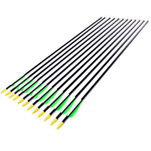 Anladia 12er Fiberglaspfeil für Bogenschießen, 32 Zoll (84 cm) Bogenpfeile Pfeile 32 Zoll Fiberglaspfeil für Sportbogen, Recurvebogen, Langbogen