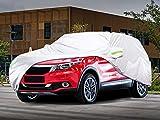 FLOWood Auto Abdeckplane Vollgarage Autoabdeckung wasserdicht Anti-UV für Auto SUV Polyester + TAFT Silber 480 x 175 x 150 cm