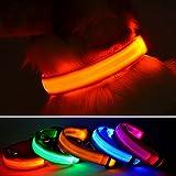 LED-Hundehalsband von Wey's, wiederaufladbar über USB, Sicherheit bei Nacht durch blinkendes Halsband, Leuchthalsband für Hunde mit verstellbarem Verschluss